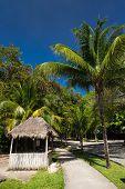 picture of playa del carmen  - Caribbean street Playacar Playa del Carmen Mexico - JPG