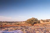 foto of atlas  - Landscape of Morocco at summer - JPG