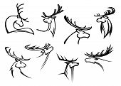 foto of antlers  - Outline sketch deer heads with proud profile and large antlers isolated on white for tattoo or mascot design - JPG