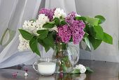pic of jug  - Lilac bouquet in a transparent jug and a cup with milk - JPG