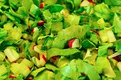 picture of chive  - Spring green salad with radishes and chives - JPG