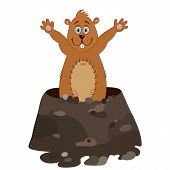 stock photo of groundhog day  - Funny groundhog cartoon - JPG