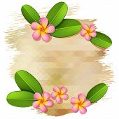 picture of frangipani  - Vector poster template with pink frangipani flowers and beige grunge background - JPG