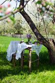 picture of lawn chair  - Small coffee table and a wooden chair under an apple tree in green summer garden - JPG