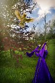 pic of blue crab  - A young woman wearing a velvet purple gown throwing a chicken in the air with a flowering crab apple and blue sky in the background - JPG