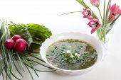 picture of sorrel  - Vegetarian soup with sorrel on a white table and tulips in a vase - JPG
