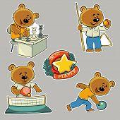 picture of bear  - Vector illustration - JPG