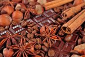 picture of cinnamon sticks  - Coffee chocolate star anise hazelnuts and cinnamon sticks close up as background  - JPG