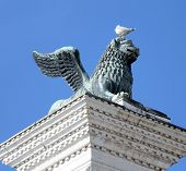stock photo of piazza  - winged lion statue in piazza san marco in Venice and Seagull in head on Mane - JPG