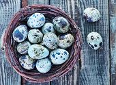 stock photo of quail egg  - quail eggs in the nest and on a table - JPG