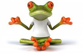 foto of amazonian frog  - Frog with a white tshirt - JPG