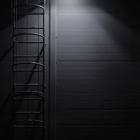 picture of emergency light  - Fire emergency rescue access escape ladder stairway - JPG