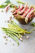 A Pod Of Green Beans And Beans. Red Beans On A Gray Slate Or Stone Background. Flat Lay. Top View Wi poster