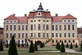 stock photo of courtier  - Baroque palace in Rogalin (Poland), view from the garden