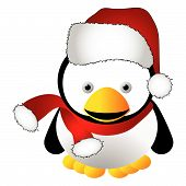 pic of santa-claus  - Penguin with santas cap isolated over white background - JPG
