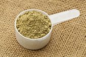 Scoop of raw organic hemp protein powder - super food rich in nutrients (proteins, antioxidants, ami