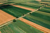 Beautiful Countryside Patchwork Pattern Of Cultivated Landscape From Drone Pov, Fields Of Corn, Soyb poster