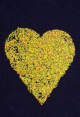 pic of cocoon tree  - heart made of palm tree fruits part of a Corpus Christi celebration flower carpet - JPG