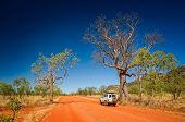 Outback track with 4WD vehicle and boab tree at the dry season with blue sky at the Kimberleys - Wes poster