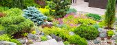 Landscape Design With Flowers, Stones And Coniferous Plants. Landscaping Panorama Of Home Garden. Be poster