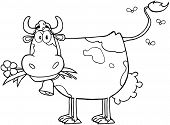 stock photo of moo-cow  - Outlined Dairy Cow With Flower In Mouth Cartoon Character - JPG