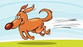 image of happy dog  - Vector illustration of happy dog running and smiling - JPG