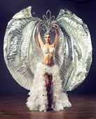 image of belly-dance  - A dancing girl in the carnival costume. 