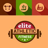 flat elite fitness design elements