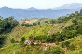 stock photo of shacks  - Small shack surrounded by lush green hills near Santa Marta Colombia - JPG