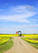stock photo of nod  - Oil pumpjack or nodding horse pumping unit in Saskatchewan prairies - JPG