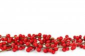 stock photo of winterberry  - Red winterberry Christmas border with holly berries on branches - JPG