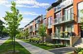image of row trees  - Modern town houses of brick and glass on urban street - JPG