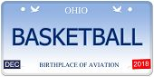 Basketball Ohio Imitation License Plate
