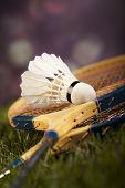 image of shuttlecock  - Badminton shuttlecock - JPG