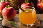 picture of cinnamon  - Organic Apple Cider with Cinnamon Ready to Drink - JPG