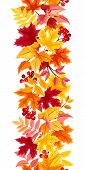 stock photo of rowan berry  - Vector vertical seamless background with colorful autumn leaves on a white background - JPG
