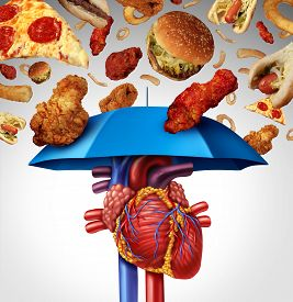 pic of cardiovascular  - Heart protection medical concept as a symbol to avoid a clogged artery and atherosclerosis disease as a blue umbrella protecting the cardiovascular organ from unhealthy food to stop plaque buildup - JPG