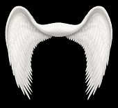 picture of cherubim  - Digital illustration of angel wings ready to be composited with other images - JPG