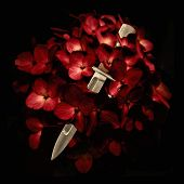 stock photo of possession  - Digital photo collage technique love deception concept showing a knife kitchen cutting a red flowers blossom in black background - JPG