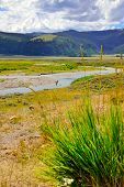 stock photo of lamar  - Fishermen in Lamar Valley in Yellowstone National Park Wyoming in summer - JPG