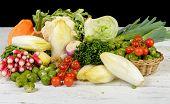 picture of endive  - radish Brussels sprouts endive cabbage tomatoes parsley pumpkin and leek - JPG