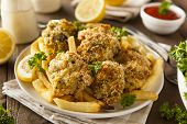 stock photo of french fries  - Homemade Breaded Fried Oysters with French Fries - JPG