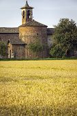 stock photo of farmhouse  - Paddy fields with farmhouse - JPG