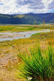foto of lamar  - Fishermen in Lamar Valley in Yellowstone National Park Wyoming in summer - JPG