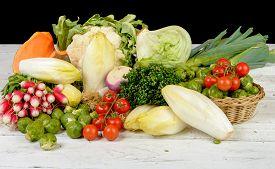 foto of endive  - radish Brussels sprouts endive cabbage tomatoes parsley pumpkin and leek - JPG