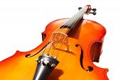 picture of fragmentation  - Violoncello fragment with bridge - JPG