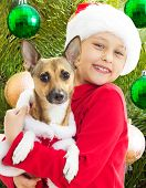 image of christmas dog  - charming kid in Christmas clothes holding his dog - JPG