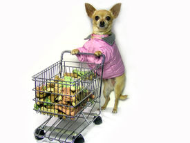 stock photo of bag-of-dog-food  - a female shopping looking for a grocery item - JPG