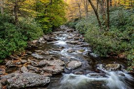 picture of smoky mountain  - Great Smoky Mountains Stream  - JPG