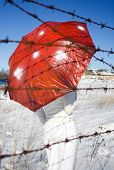 pic of shroom  - Girl with red mushroom umbrella - JPG
